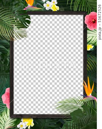 背景-夏-熱帯-トロピカル-モンステラ-プルメリア-ハイビスカス-木製フレーム 53672526