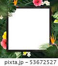 背景-夏-熱帯-トロピカル-モンステラ-プルメリア-ハイビスカス-木製フレーム 53672527