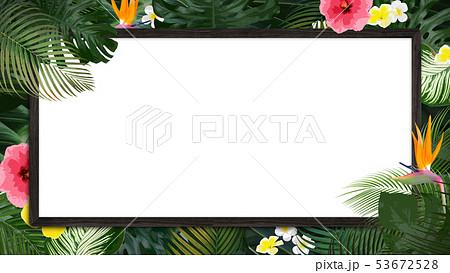 背景-夏-熱帯-トロピカル-モンステラ-プルメリア-ハイビスカス-木製フレーム 53672528