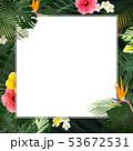 背景-夏-熱帯-トロピカル-モンステラ-プルメリア-ハイビスカス-フレーム 53672531