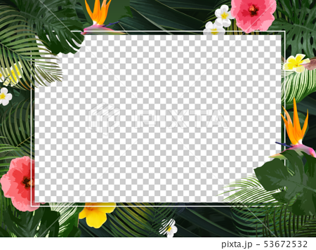 Background-Summer-Tropical-Tropical-Monstera-Plumeria-Hibiscus-Frame 53672532