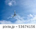 アジサシ・海鳥・飛ぶ・青空 53674156