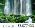 唐沢の滝(菅平高原) 53677433