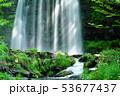 唐沢の滝(菅平高原) 53677437
