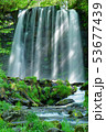 唐沢の滝(菅平高原) 53677439