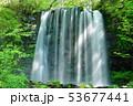 唐沢の滝(菅平高原) 53677441