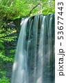 唐沢の滝(菅平高原) 53677443