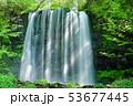 唐沢の滝(菅平高原) 53677445