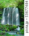 唐沢の滝(菅平高原) 53677484