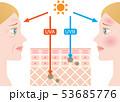 紫外線 肌の構造 女性 横顔 53685776