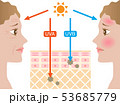 紫外線 肌の構造 女性 横顔 53685779