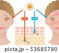 紫外線 肌の構造 女性 53685780