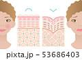 健康肌 しわ肌 肌の構造と外国人女性 53686403