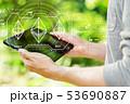 仮想通貨 通貨 両替の写真 53690887