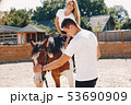 Beautiful couple spend time with a horses 53690909