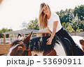 Elegant girl in a farm wiith a horse 53690911
