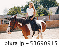 Elegant girl in a farm wiith a horse 53690915