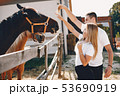 Beautiful couple spend time with a horses 53690919