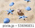 ヤドカリ 53696831
