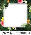 背景-夏-熱帯-トロピカル-モンステラ-プルメリア-ハイビスカス-木製フレーム 53700454
