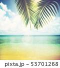 夏 南国 海のイラスト 53701268
