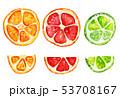 オレンジ オレンジ色 橙のイラスト 53708167