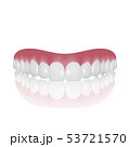 Vector 3d Realistic Render Denture Closeup Isolated on White Background. Dentistry and Orthodontics 53721570