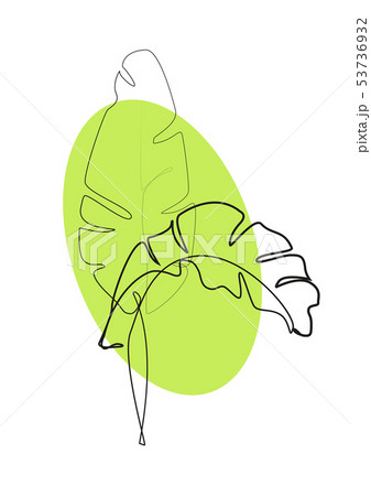 One line drawing. Contour drawing of Banana leaves 53736932