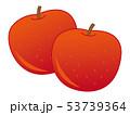 果物 果実 フルーツのイラスト 53739364