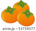 果物 果実 フルーツのイラスト 53739377