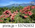 長野県 野辺山高原 平沢峠 しし岩からの八ヶ岳 53742832