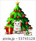 53745128
