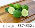シトラス 柑橘 柑橘系の写真 53745321