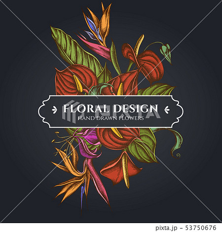 Floral bouquet dark design with gloriosa, anthurium, strelitzia 53750676