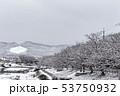 賀茂川 - 雪景色 53750932