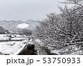 賀茂川 - 雪景色 53750933