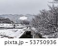 賀茂川 - 雪景色 53750936