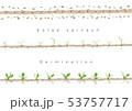 サラダほうれん草の発芽イラスト01 53757717
