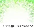 新緑イメージ背景初夏 53758872