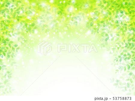 新緑イメージ背景初夏 53758873