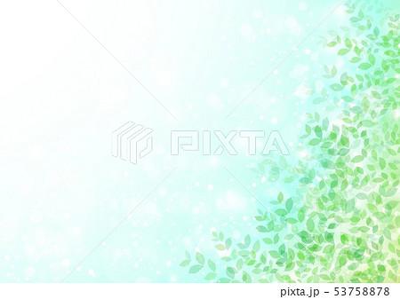 新緑イメージ背景初夏 53758878