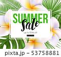 Vector summer sale banner design. Plumeria flowers 53758881