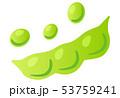 野菜 農作物 食材のイラスト 53759241