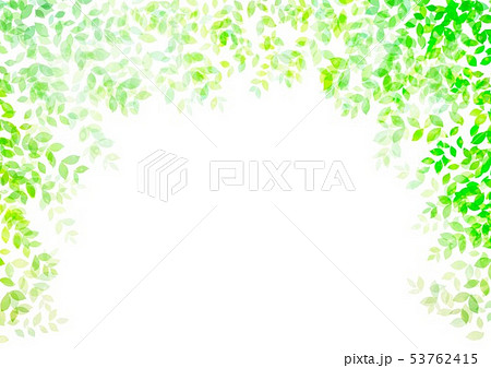 新緑イメージ背景初夏 53762415