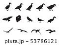 Black and White Silhouettes of various birds. 53786121
