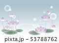 和風素材・蓮 53788762