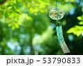 日本の涼感5 53790833