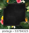 背景-夏-熱帯-トロピカル-フレーム-ブラックボード 53794325