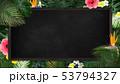 背景-夏-熱帯-トロピカル-フレーム-ブラックボード 53794327