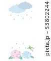 紫陽花 雨 梅雨のイラスト 53802244